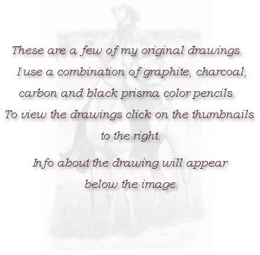 These are a few of my drawings.  I use a combination of graphite, charcoal, carbon and black prisma color pencils.